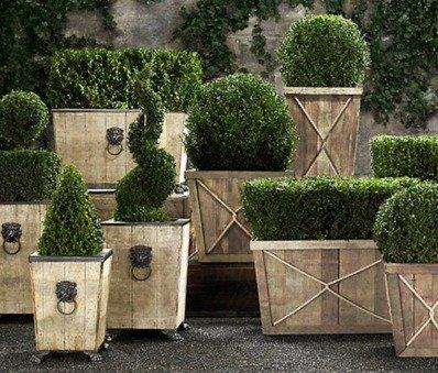 Горшки для посадки деревьев